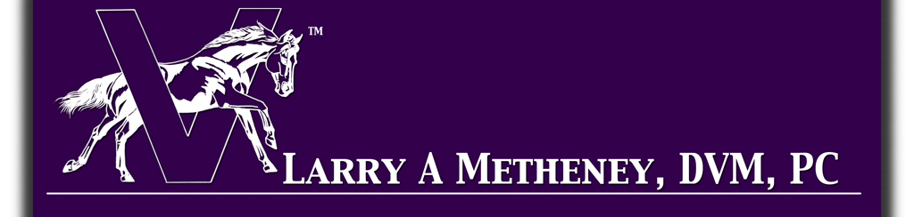 l a metheney, dvm, pc header with equine logo